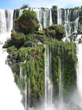 Alto Parana - Paraguay (by Mr Andrew Murray)