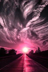 violet road