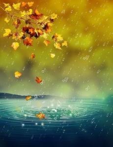 bolluk yağmuru