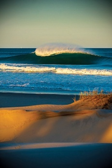 Wave - Trent Mitchell