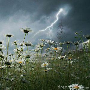 Lightning strike over field. by Elenamiv