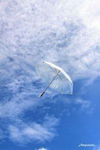 fly away umbrella