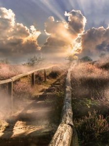 misty stairs by Patrick Strik