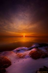Gold and violet sunrise on the horizon, Wisconsin by Phil-Koch