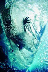 Surf Life Away - Australia