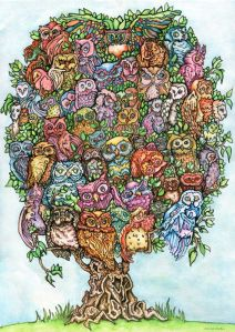 Almost 60 Owls