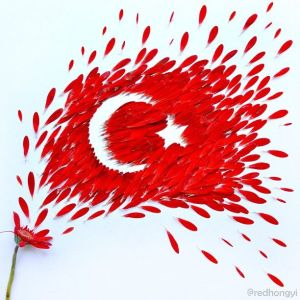 A Turkish Flag made of flowers by Hong Yi