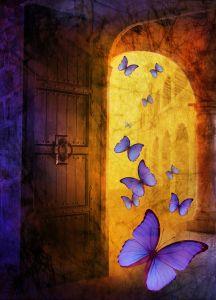 Butterflies are free to fly by Juliana Kolesova