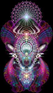 Vibrational evolution