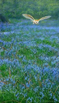 Jeremy Paul - Wildlife artist