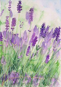 Parfum de la Provence by Andrea Fettweis