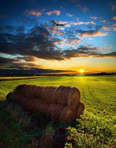 hay-bales-the-sky-at-dusk