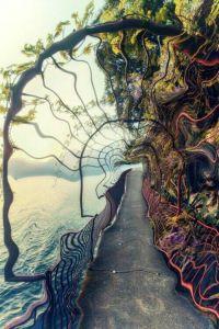 the-doors-of-perception