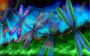 dragonfly-medicine