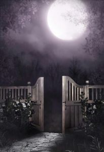 gate-to-the-moon