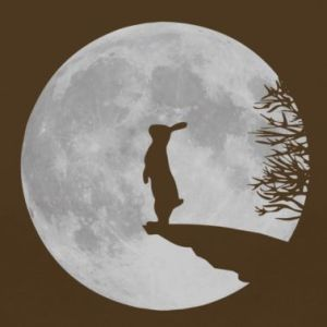 hare-in-the-moon