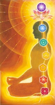 kundalini-shakti-chakras