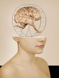 rhonald-blommestijn-illustration-brain