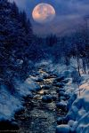 winter-creek-by-peter-from