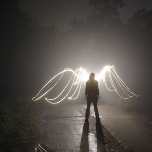 wings of light