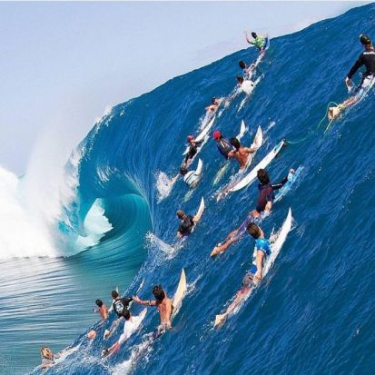 surfing crowds