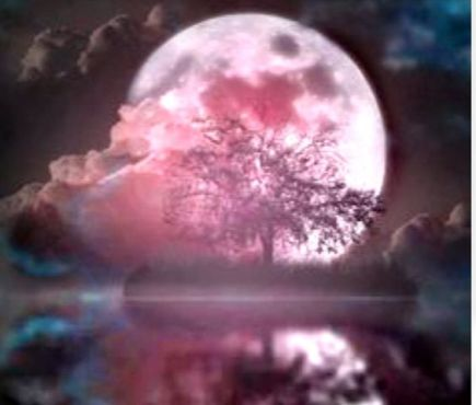 Full Moon - pink fantasy unknown artist