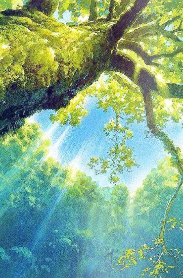 Unknown artist - woods