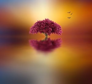 Holographic Reality by Josep Sumalla
