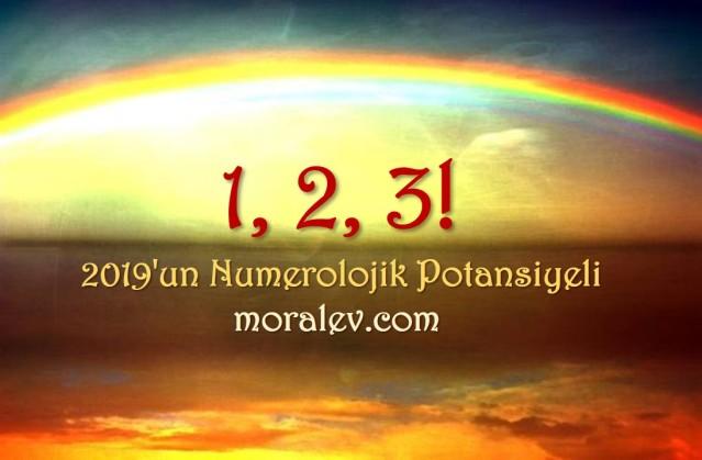 2019 numeroloji