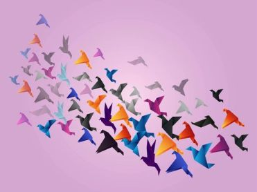 Free Vector- bird migration