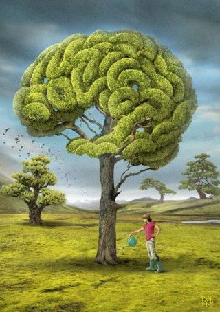 Igor Morski - brain tree