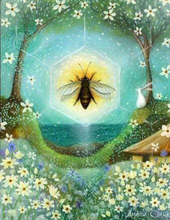 Summer solstice - Amanda Clark