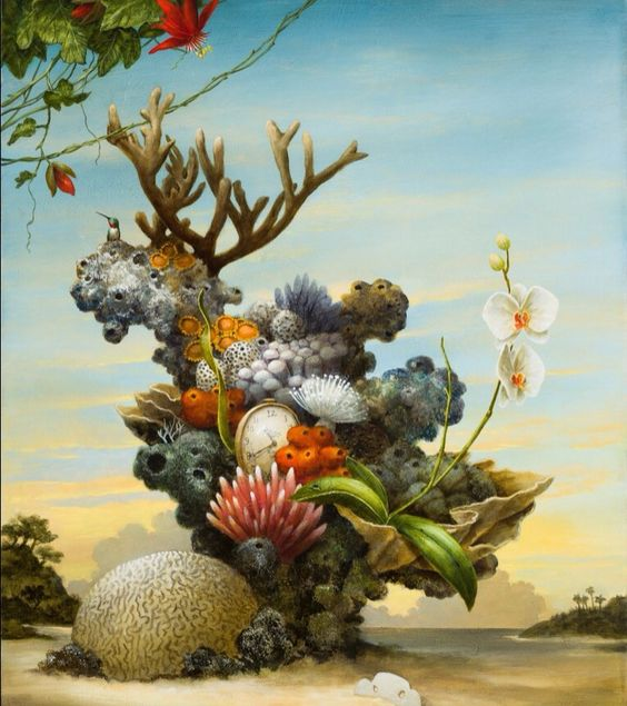 Kevin Sloan - corals
