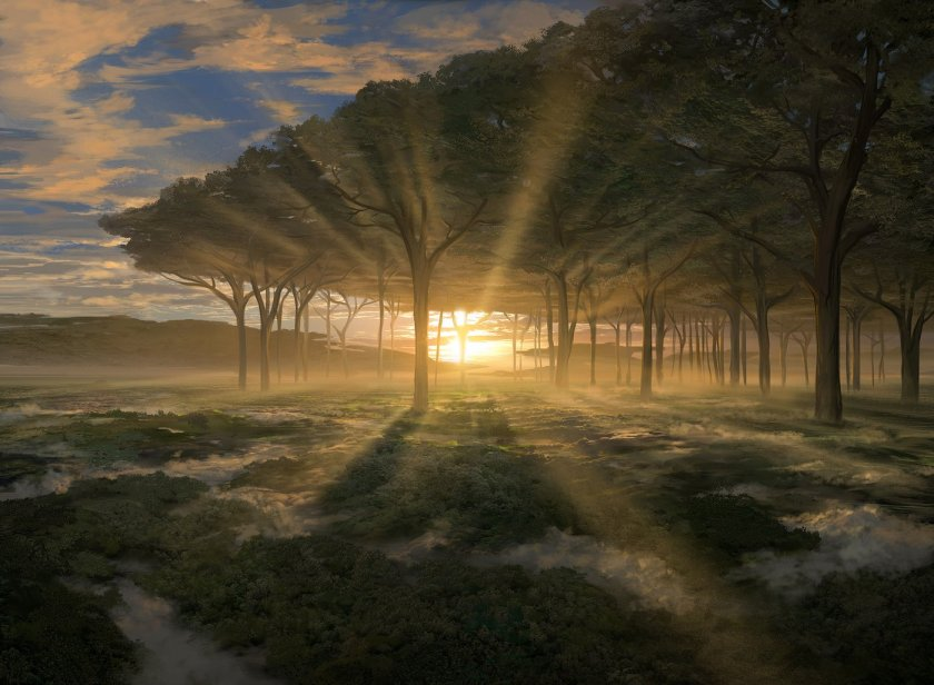 Noah-Bradley_Horizon-Canopy_1400x